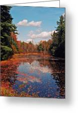 Autumn Reflections Greeting Card by Joann Vitali