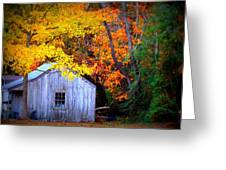 Autumn Rest Greeting Card by Trish Clark