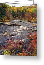 Autumn River Greeting Card by Joann Vitali