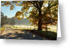 Autumn Road Greeting Card by Bill  Wakeley