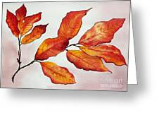 Autumn Greeting Card by Shannan Peters
