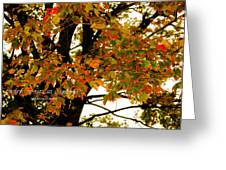 Autumn Smile Greeting Card by Jaime Lind