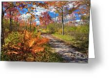 Autumn Splendor Greeting Card by Bill Wakeley