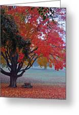 Autumn Splendor Greeting Card by Lisa  Phillips