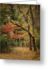 Autumn Walk Greeting Card by Diane Schuster