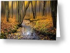 Autumn Woodland Greeting Card by Ian Hufton