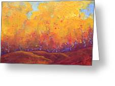 Autumn's Blaze Greeting Card by Nancy Jolley