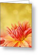 Autumns Calling Card Greeting Card by Reflective Moments  Photography and Digital Art Images