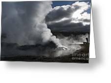 Awakening In Yellowstone Greeting Card by Sandra Bronstein