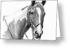B and W study Greeting Card by JQ Licensing