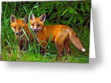 Babes In The Woods Impasto Greeting Card by Steve Harrington