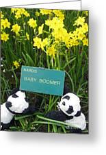 Baby Boomers Greeting Card by Ausra Paulauskaite