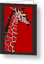 Baby Giraffe In Red Black And White Greeting Card by Jane Schnetlage