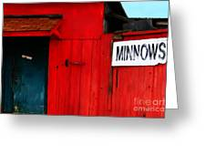 Bait Shop 20130309-2 Greeting Card by Wingsdomain Art and Photography