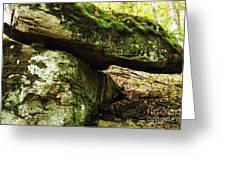 Balance Is Key Greeting Card by Thomas R Fletcher
