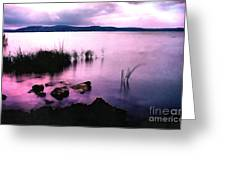 Balaton By Night Greeting Card by Odon Czintos