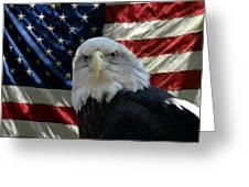 Bald Eagle 321 Greeting Card by Joyce StJames