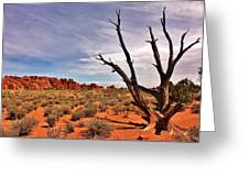 Bald Tree At Arches  Greeting Card by Benjamin Yeager
