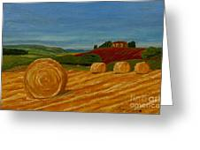 Field Of Golden Hay Greeting Card by Anthony Dunphy
