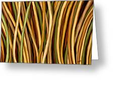 Bamboo Canes Greeting Card by Brenda Bryant