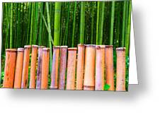 Bamboo Fence Greeting Card by Julia Ivanovna Tanner