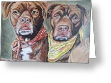 Bandana Dogs Greeting Card by Stephanie Dunn