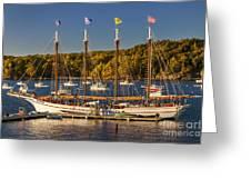Bar Harbor Schooner Greeting Card by Brian Jannsen
