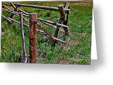 Barbed Wire Greeting Card by Janice Rae Pariza