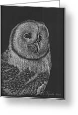 Barn Owl Greeting Card by Lawrence Tripoli