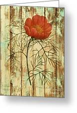 Barn Wood Texture Poppy Flower Botanical Art Greeting Card by Cranberry Sky