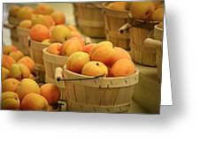 Baskets Of Apricots Greeting Card by Julie Palencia