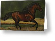 Dark Horse Greeting Card by Lucy Deane
