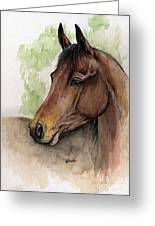 Bay Horse Portrait Watercolor Painting 02 2013 A Greeting Card by Angel  Tarantella