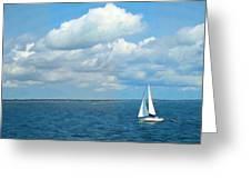 Bay Sailing Greeting Card by Barbara McDevitt