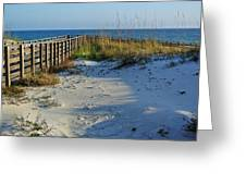 Beach And The Walkway  Greeting Card by Michael Thomas