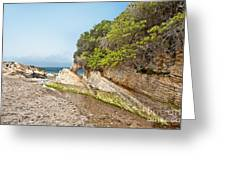Beach At Montana De Oro Greeting Card by Artist and Photographer Laura Wrede