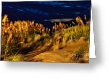 Beach At Night - Outer Banks Pea Island Greeting Card by Dan Carmichael