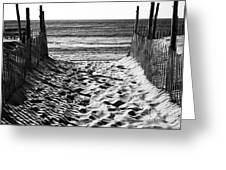 Beach Entry Black And White Greeting Card by John Rizzuto