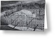 Beach Fence BW Greeting Card by Susan Candelario