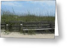 Beach Grass and Bench  Greeting Card by Cathy Lindsey