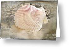 Beached Greeting Card by Betty LaRue