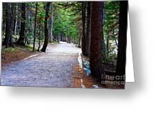 Bear Lake Trail Greeting Card by Jon Burch Photography