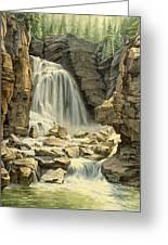 Beartooth Falls Greeting Card by Paul Krapf