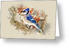 Beautiful Blue Jay - Watercolor Art Greeting Card by Christina Rollo