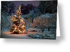 Beautiful Christmas Tree Lights Greeting Card by Boon Mee
