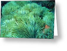 Beautiful Coral Reef 2 Greeting Card by Lanjee Chee