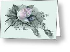 Beautiful Flowers for Mother's Day Greeting Card by Sarah Vernon