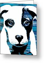 Beautiful Pit Greeting Card by Cindy Edwards