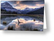 Beauty Creek Pre-dawn Greeting Card by Brian Stamm