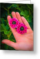 Beauty In Her Hands Greeting Card by Sotiris Filippou